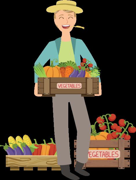 cagette légumes