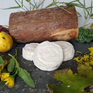 fromage crottin brebis
